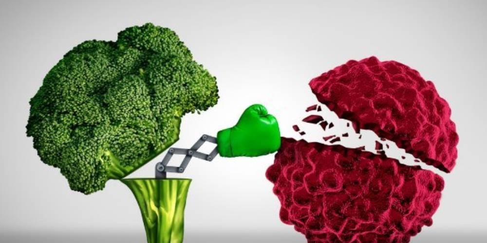 L'alimentazione ed i tumori